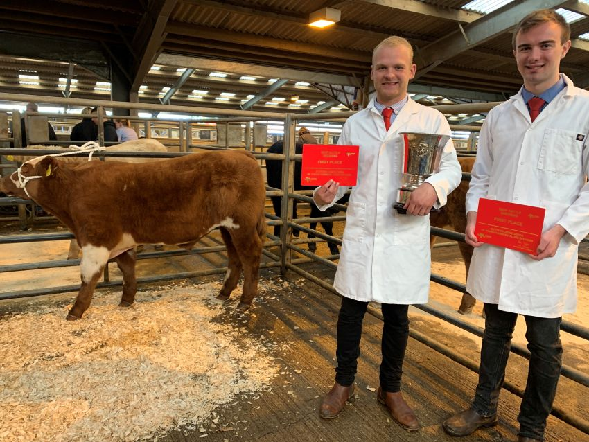Annandale Pair Win National Beef Cattle Dressing