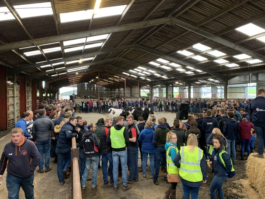 Roaring Success at The First West Region Open Stock Judging