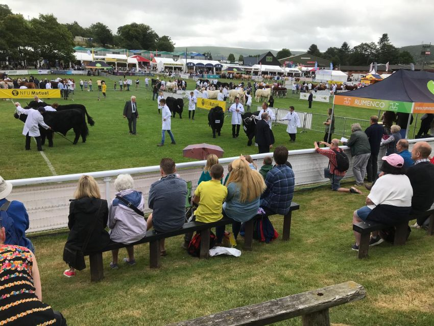 A Day at The Royal Welsh Show